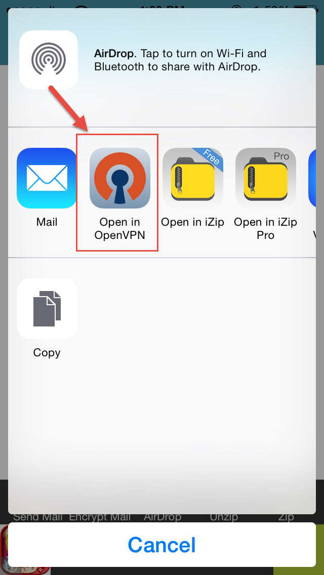 Installation Openvpn ios step 8